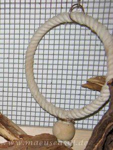 Papageienring aus Baumwollseil