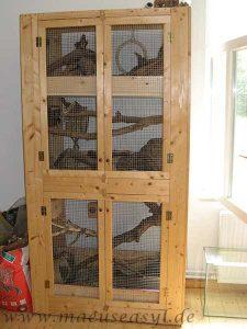 Selbstgebaute Voliere, eingerichtet für Buschschwanz-Rennmäuse