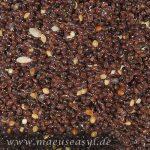 Hirse Broomcorn Panicum miliaceum