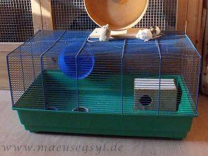 Klassischer Mäusekäfig