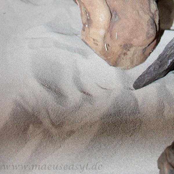 Sandbad zum Kühlen
