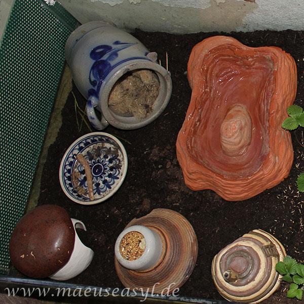 Ton- und Keramikinventar im Naturgehege