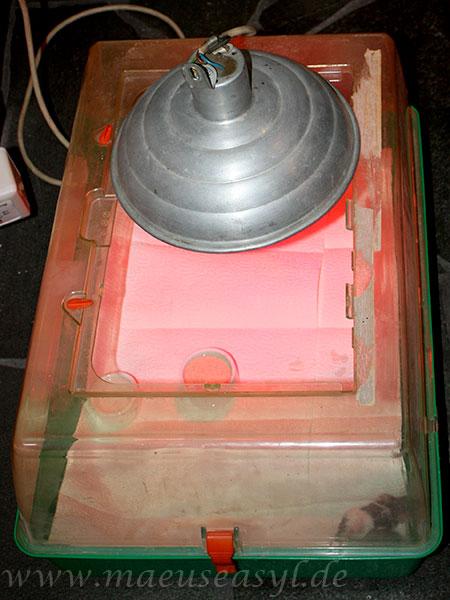 Rotlichtbox für gleichmäßige Wärme