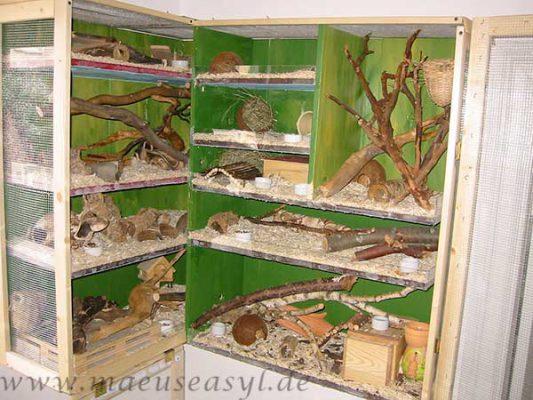 Für Knirpsmäuse erstellter Eigenbau
